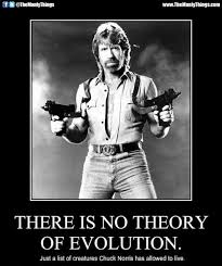 Chuck Norris Birthday Meme - celebrate chuck norris 75th birthday with some memes star2 com