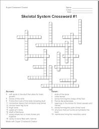 the nervous system crossword u0026 nervous system worksheet 3rd grade