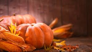 thanksgiving day pumpkin squash happy thanksgiving day wooden