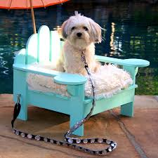 Dog Bed With Canopy Bedroom Enchanting Looking For Outdoor Dog Bed Pick The Best