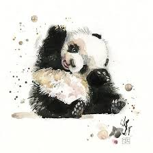 baby panda design by jane crowther bug art greeting cards