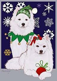 american eskimo dog breeders new england why are dogs so insanely happy to see us when we get home