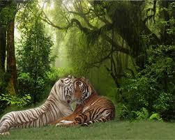 beibehang custom photo wallpaper 3d stereo forest tiger