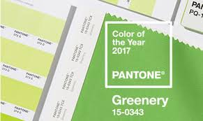 pantone color of the year 2017 announcement the pantone color of the year 2017 has been announced gifts dec