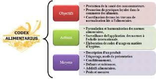 bureau protection du consommateur memoire pourquoi et comment le consommateur est il protégé