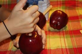 halloween candy apple sticks caramel apples aren u0027t just for halloween