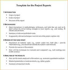 project report format project report template pdf jpg pay stub