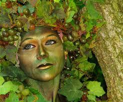 Tree Halloween Costumes Tree Costume Makeup Images