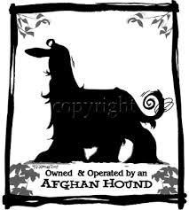 afghan hound group afghan hound designs by mike mccartney