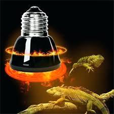250 watt infrared heat l bulb red heat l bulbs heat l light bulbs pet l black