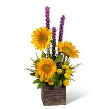 get well flowers clermont florist clermont fl 34711