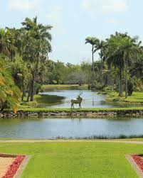 Fairchild Botanical Garden by 18 Beautiful Botanical Garden Wedding Venues Martha Stewart Weddings
