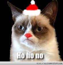 No Meme Cat - ho ho no cat meme cat planet cat planet