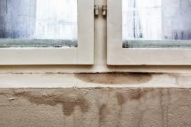 waterproofing basements is easy with polyurea coatings marvel