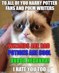 Grumpy Cat Meme - grumpy cat meme imgflip