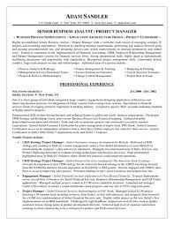 Business Analyst Resume Template Professional Business Analyst Resume Exles Featuring Project