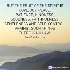 what is the fruit of the spirit and how do i grow it by nylse esahc