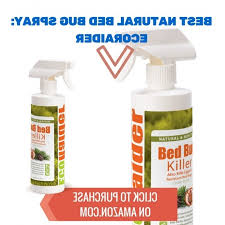 What Kills Bed Bugs Naturally Best Bed Bug Killer The Best Natural Bedbug Spray Nontoxic And