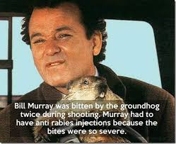Bill Murray Groundhog Day Meme - groundhog day 2015 the memes you need to see heavy com page 9