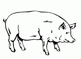 printable pig coloring pages kids peppa color pictures