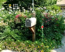 Ideas For Gardening Mailbox Landscape Design Hgtv