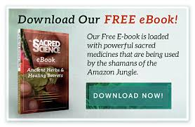 Amazon Com Method Daily Wood by The Art Of Smudging A Shamanic Cleansing Ritual The Sacred