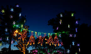 phoenix zoo lights tickets swing over to the phoenix zoo for zoolights zoolights
