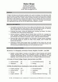profile resume examples resume writing objectives summaries or