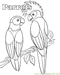 parrot coloring pages parrot coloring page free parrots coloring pages
