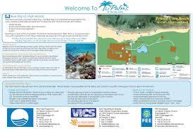 Blue Flag Beach Palms Pelican Cove Blue Flag Beach My St Croix