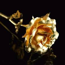 beautiful gifts valentine gift 24k gold rose 10 inch with beautiful gift box and