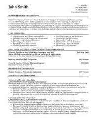 Sales And Marketing Resume Examples by Sample Resume For Digital Marketing Career Brandneux Com Work