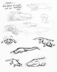 sketches u2014 mattias lanas