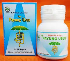 Obat Cacing Tipes kapsul cacing untuk penyakit tifus gerai aas herbal