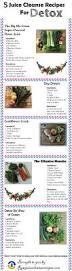 best 25 2 day juice cleanse ideas on pinterest juice clense