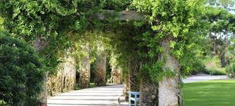 Naples Florida Botanical Garden Caribbean Garden Naples Botanical Garden
