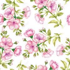 vector seamless background a branch of cherry blossoms design