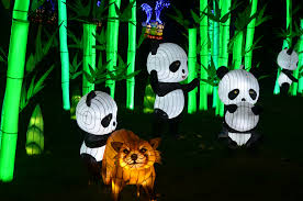 chinese lantern festival 2017 daniel stowe botanical garden