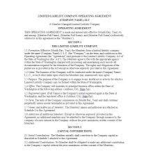 profit sharing agreement template llc operating agreement