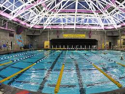 17 spots in the bay area where you can swim for under 10