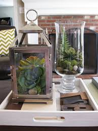 terrarium coffee table lantern and glass displays on white wooden
