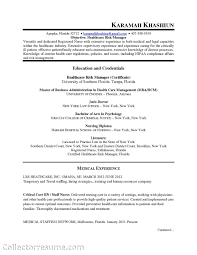 sle format resume chief compliance officer resume healthcare sle hipaa privacy