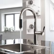 Kitchen Pull Down Faucets Perfeque Pull Down Kitchen Faucet Lm By Inspirations And Graff