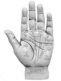 the magick in your fingers todd savvas
