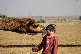 thar desert a fantastic 3 day camel trek in the thar desert rajasthan day 3