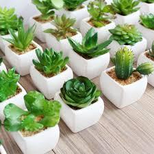 high quality unique succulent potted artificial mini succulent