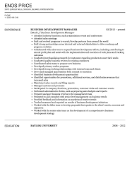 business development manager resumes business development manager resume sample velvet jobs
