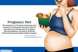 pregnancy diet foods to eat during 1st 2nd and 3rd trimester