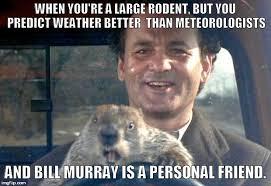 Murray Meme - bill murray groundhog day meme the ground beneath her feet