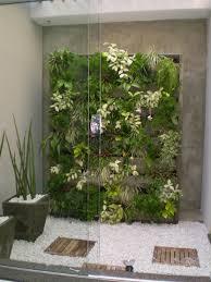 wall garden indoor wall green jardim vertical pesquisa do google plantas